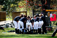 Softball vs. Alvernia